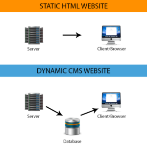 html-or-cms